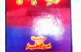 Arooj e Shabab PDF Free Download